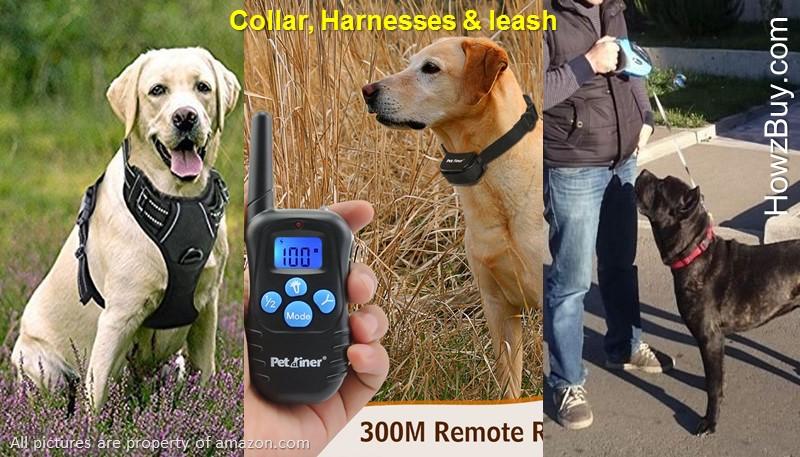 Best Pet product-Best dog-best cat-dog accessories-dog food-dog grooming-dog shelter-dog and cat-cat-dog-care-dog collar-dog leash-dog harness